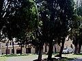 Tenuta di Montecucco (GR).jpg