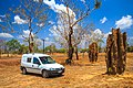 Termite mounds of Australia - all shaps and sizes (13113184645).jpg