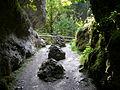 Teufelshöhle Pottenstein, Ausgangsschlucht.jpg