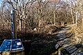 Texel - De Dennen - Nature Path 'Alloo' - View North II.jpg