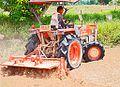 Thai-farmer.jpg