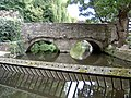 The Bridge over part of the River Avon - geograph.org.uk - 647554.jpg