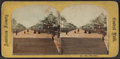 The Mall, from Robert N. Dennis collection of stereoscopic views 2.png