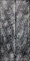 The New Dressmaker, 1921, Ill. No. 0063.jpg