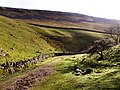 The Path from Gaping Gill near Trow Gill - geograph.org.uk - 320931.jpg