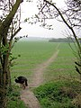 The Path to Wendover crosses a vast field - geograph.org.uk - 1259621.jpg