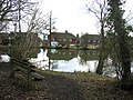 The Pond near Holmwood Station - geograph.org.uk - 107241.jpg