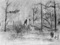 The School and Society - Drawing of a Forest.png