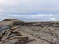 The tundra landscape (232396169).jpg