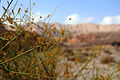 Timna valley 16600 (11963063514).jpg