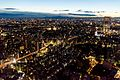 Tokyo from Tokyo Tower - panoramio.jpg