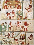 أعـظـم 100 كتاب فـي تـاريخ الـبشريـة ... 140px-Tomb_of_Nakht_%282%29