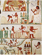 A tomb relief depicts workers plowing the fields, harvesting the crops, and threshing the grain under the direction of an overseer.