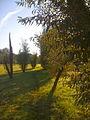 Topiary Garden Boizenburg Marcel Kalberer.jpg