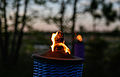 Torch (15784145126).jpg