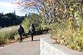 Toronto - High Park (6569455421).jpg