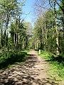 Track to Butchershole Car Park - geograph.org.uk - 1272349.jpg