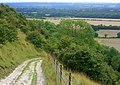Track to White Sheet Hill - geograph.org.uk - 934207.jpg