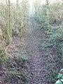 Trackbed of former MandSWJ Railway near Baunton - geograph.org.uk - 647029.jpg