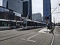 Trams at Rotterdam central station (2019).jpg
