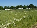 Travellers on Toton Fields - geograph.org.uk - 1345591.jpg
