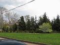 Trukhaniv park1.JPG