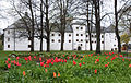 Tulips in front of the Turku Castle, May 2014.jpg