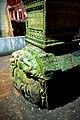 Turkey-03577 - Medusa Head (11314913716).jpg