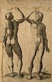 Two male nudes in the same pose, with a raised right arm, se Wellcome V0007797.jpg