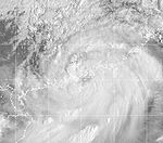 Typhoon York 1999.jpg
