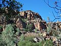 USA-Pinnacles National Monument-Bear Gulch Trail-10.jpg