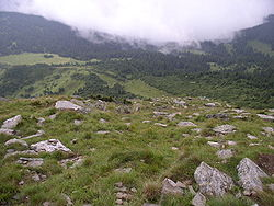 Ukraine-Petros Mountain-2.jpg