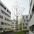 Ulmer Areal Dr Waibel Straße Dornbirn 14.JPG