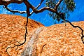 Uluru - detail - taken from Uluru base walk.jpg