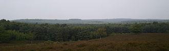 Utrecht Hill Ridge - Utrecht Hill Ridge as seen from the Elsterberg