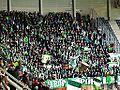 VFL Wolfsburg supporters (Stade Pierre Mauroy, Lille).JPG