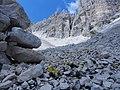 Val Strut,qua una volta cera un ghiacciaio - panoramio.jpg