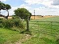 View across fields - geograph.org.uk - 938262.jpg