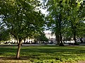View from the bench (OpenBenches 103-2).jpg