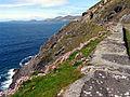 View of Slea Head Cliffs - geograph.org.uk - 16688.jpg