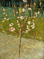 Vincent van Gogh - Almond tree in blossom - Google Art Project.jpg