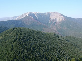 Battle of Dobro Pole - Tzena mountain