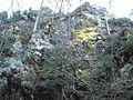 Wandern im November in Todtmoos - panoramio (29).jpg