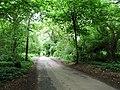 Warren Road, Blue Bell Hill - geograph.org.uk - 1355654.jpg