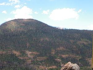 Warrumbungle National Park - Warrumbungle National Park after January 2013 fire