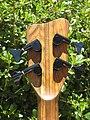 Warwick Thumb Bass NT 2006 (2812641912).jpg