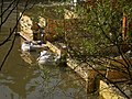 Wasserhaltung mit einigen Big-packs im Wasser der Lahn für Einbau Traggerüst, Bauarbeiten Weidenhäuser Brücke in Marburg, 2018-04-18.jpg