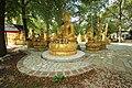 Wat Thammapathip à Moissy-Cramayel le 20 août 2017 - 23.jpg