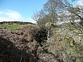 Waterfall, Sconce, Baildon - Bingley - geograph.org.uk - 749294.jpg