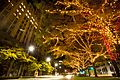 West Grand Blvd. Holiday Lighting (5355530446).jpg